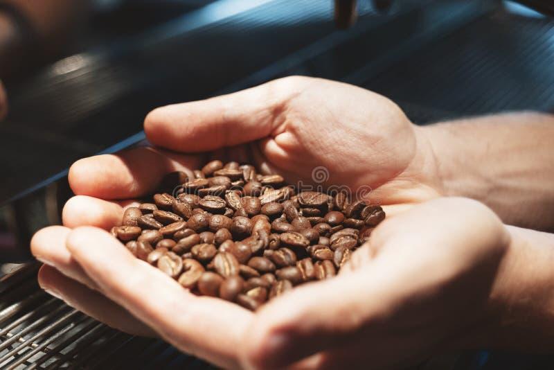 Barista-Mann, der frisch Röstkaffeebohnen in den Händen hält, schließen oben stockfoto