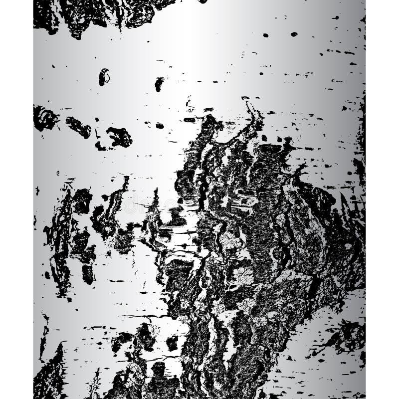 Bark of birch in the cracks texture. Vector illustration vector illustration