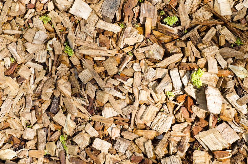 Bark Chip Background. Overhead shot of an old bark chip pathway with vegetation growing through it. Landscape orientation stock photos