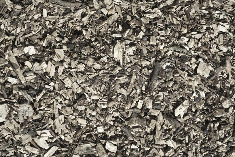 Bark chippings. stock image