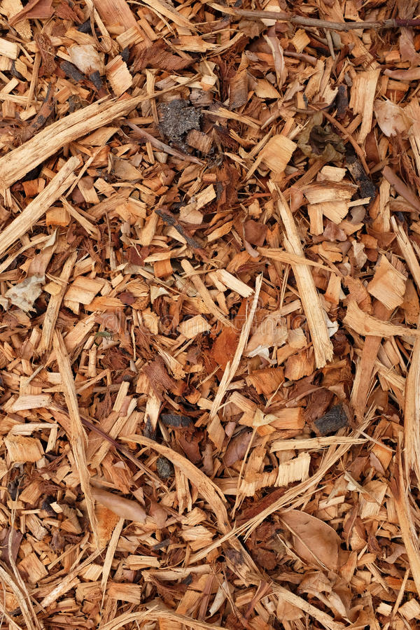 Bark, leaves and wood chippings background royalty free stock image