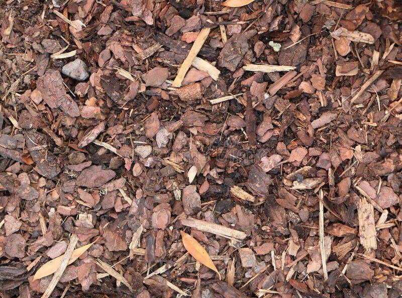 Bark mulch background, outdoor wallpaper stock photo