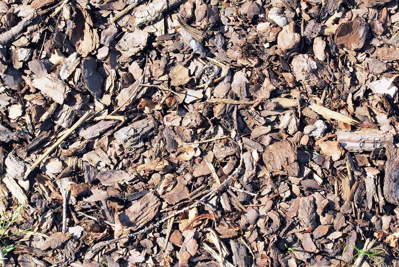 Bark. Reddish brown, decorative, ornamental pine bark, which is ideal for use in children's play areas. can also be used ,as a decorative bark mulch, to inhibit stock photos