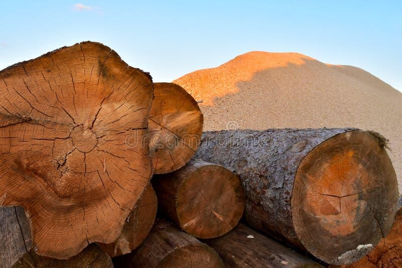 Bark wood on pile royalty free stock photos