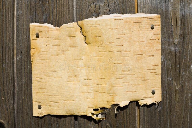 Barke auf hölzernem Hintergrund lizenzfreie stockbilder