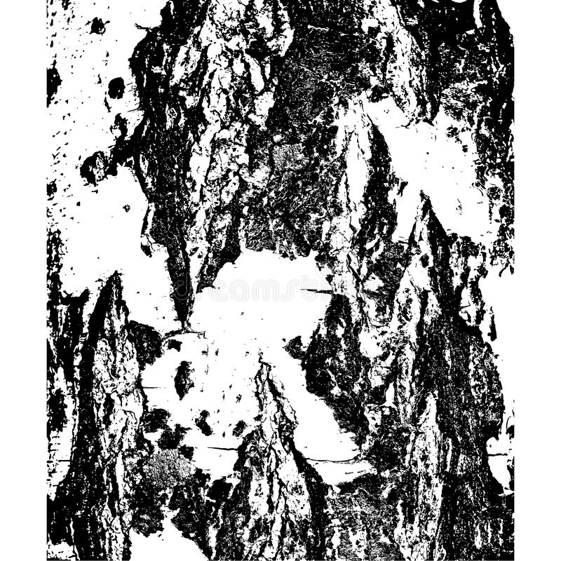 Barke der Birke in der Sprungsbeschaffenheit Auch im corel abgehobenen Betrag vektor abbildung