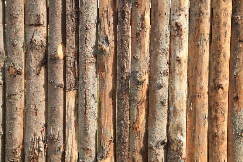 Barkenholzbeschaffenheit lizenzfreie stockfotos