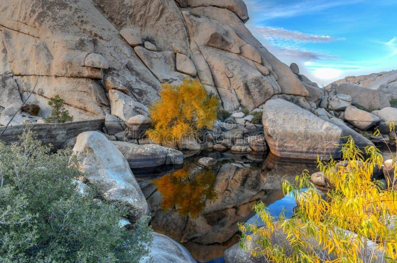 Barker Dam - Joshua Tree National Park photo libre de droits