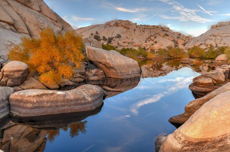 Barker Dam - Joshua Tree National Park images libres de droits