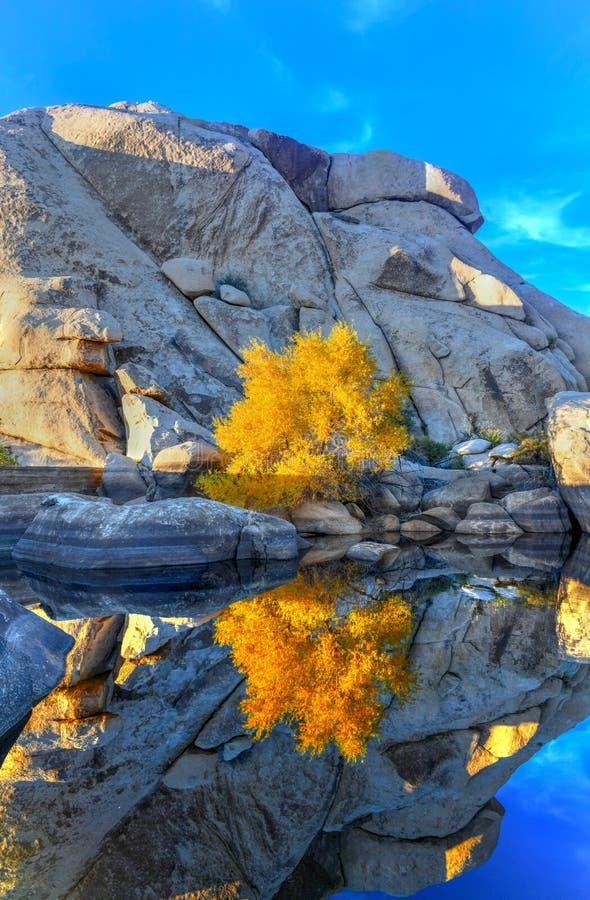Barker Dam - Joshua Tree National Park photo stock