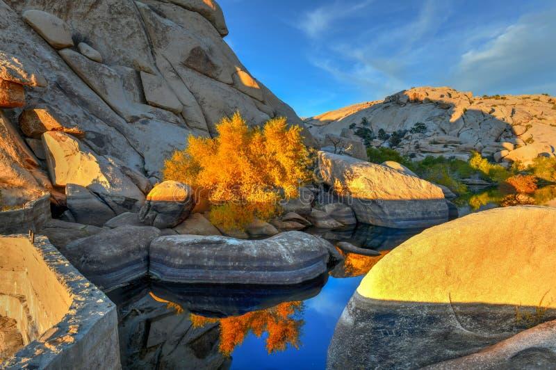 Barker Dam - Joshua Tree National Park photographie stock libre de droits