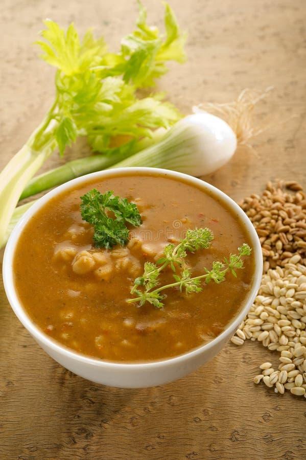 Barley Soup Royalty Free Stock Photography