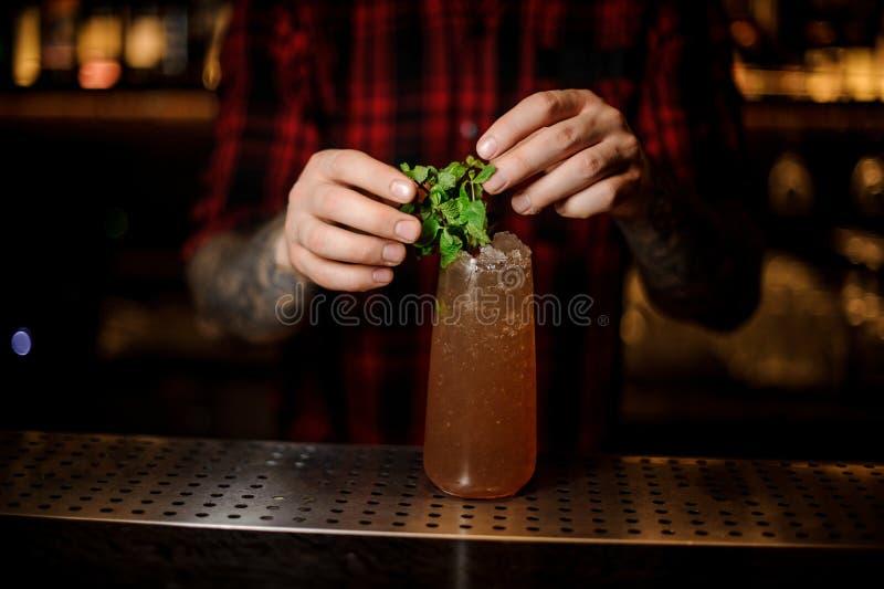 Barman ajoutant au cocktail du croc d'un cobra les feuilles en bon état image stock