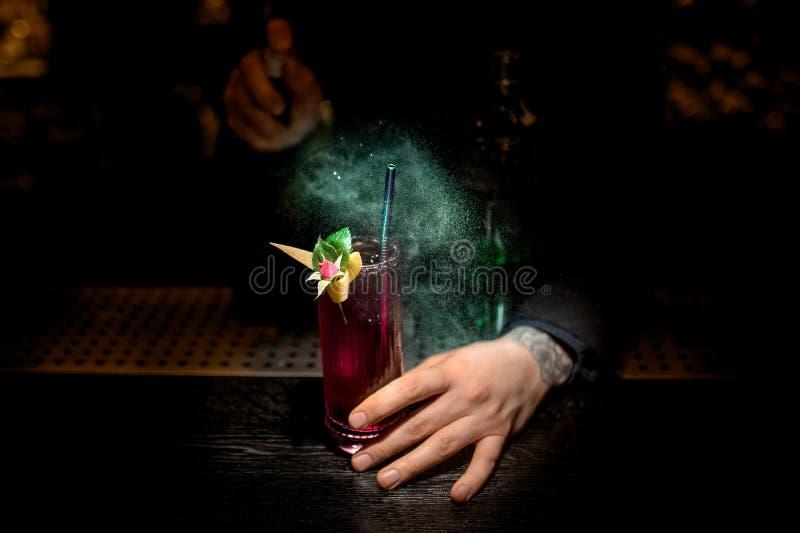 Barman die cocktail maken die met bloem wordt verfraaid die spuitbus gebruiken royalty-vrije stock afbeelding