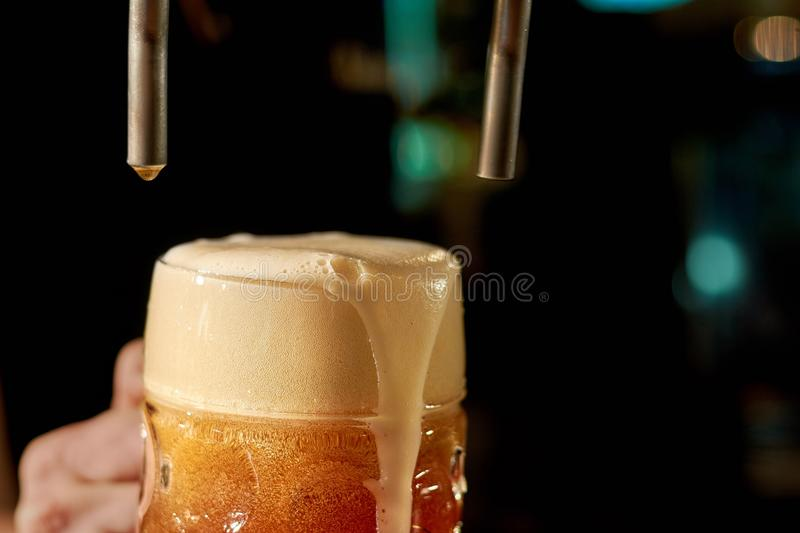 Barman pouring fresh beer in night club. royalty free stock images