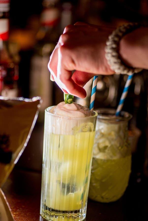 Barman pr?parant le cocktail image libre de droits