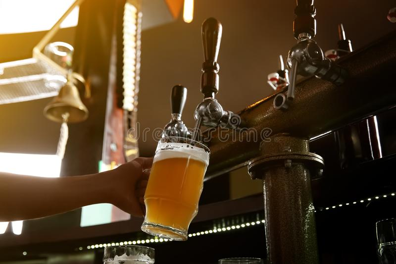 Barmanu dolewania piwo od klepnięcia w szkło zdjęcia royalty free