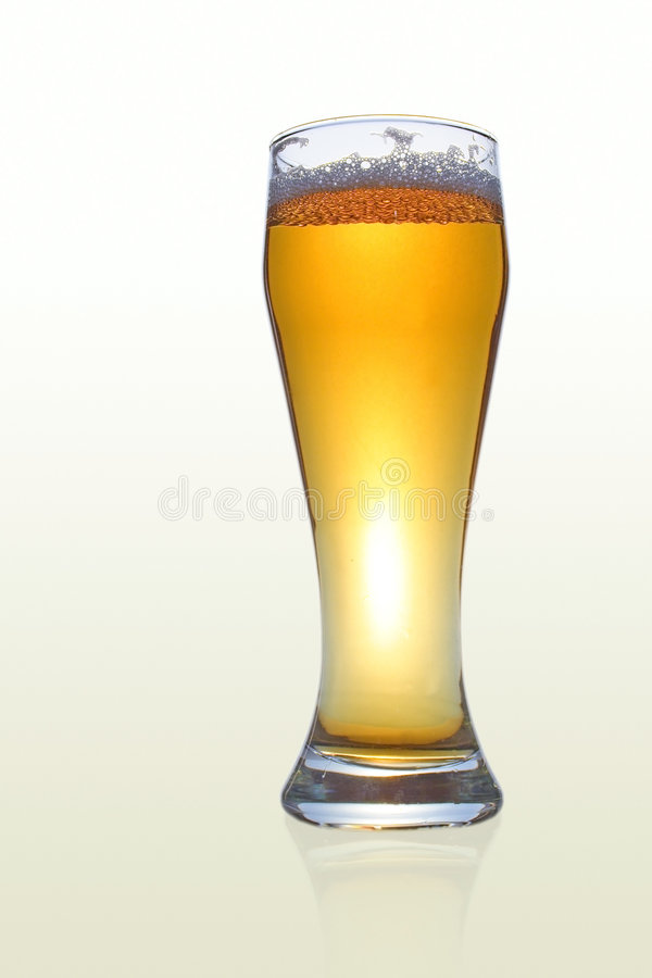 Barmy beer royalty free stock photography