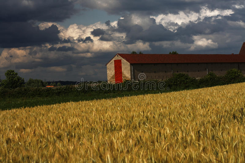 Download Barn stock image. Image of fields, barn, nature, vivid - 20033791