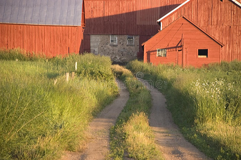 barn dairy farm freshly painted στοκ φωτογραφία με δικαίωμα ελεύθερης χρήσης