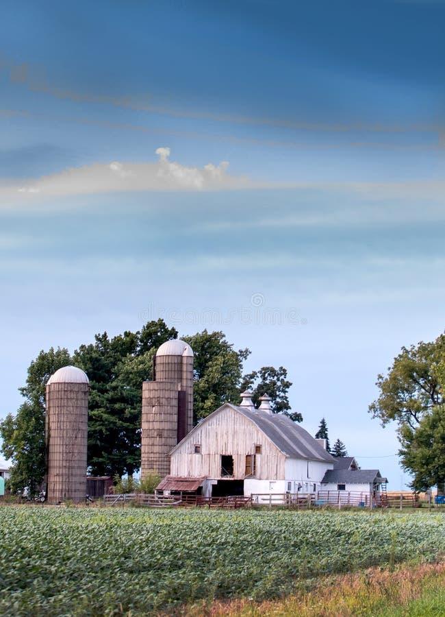 Barn de Indiana Rural com campo verde imagem de stock