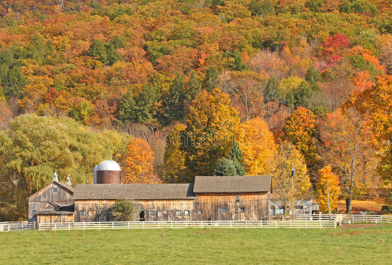 Barn and fall colors. Barn, white fence and fall colors upstate rural New York royalty free stock images