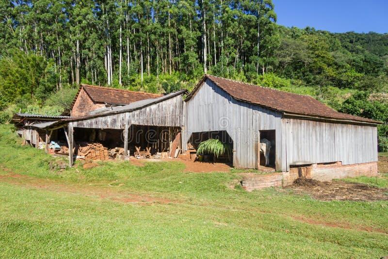 Barn in a farm. With forest in background, Venancio Aires, rio Grande do Sul, Brazil stock photo