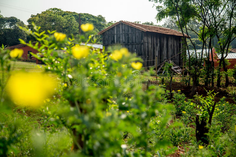 Barn farm old rural. Rustic wood architecture stock image