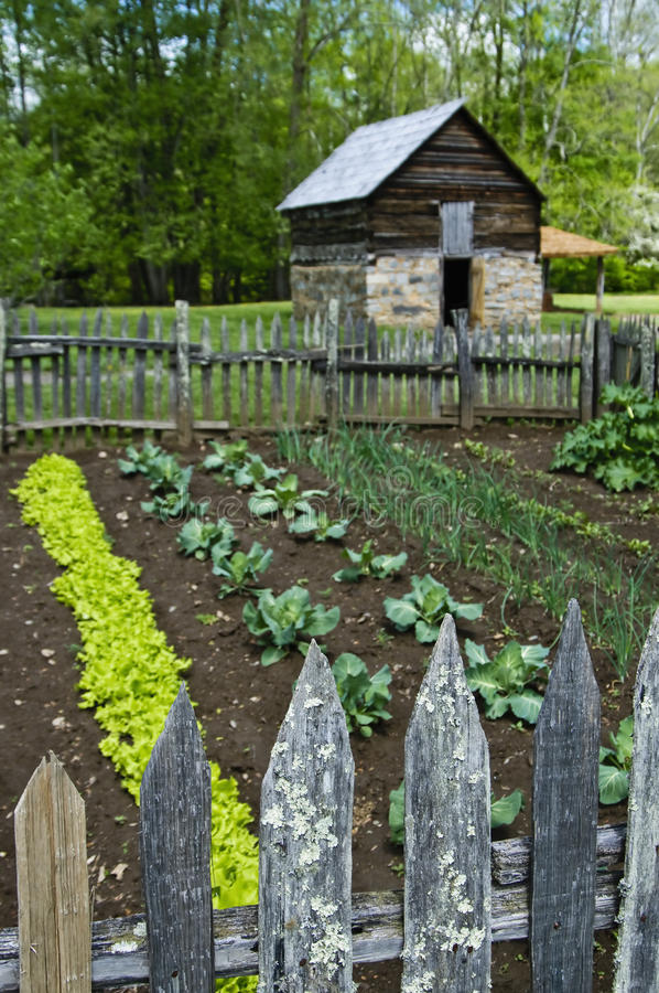 Download Barn with farming garden stock image. Image of farming - 9912279