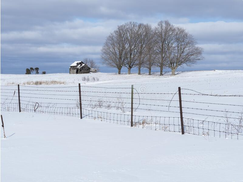 Barn, fence and trees in a winter landscape royalty free stock image