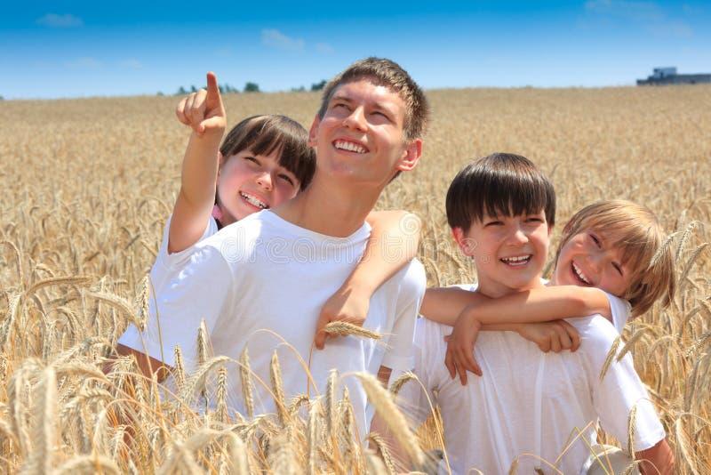 barn field lyckligt vete royaltyfria bilder