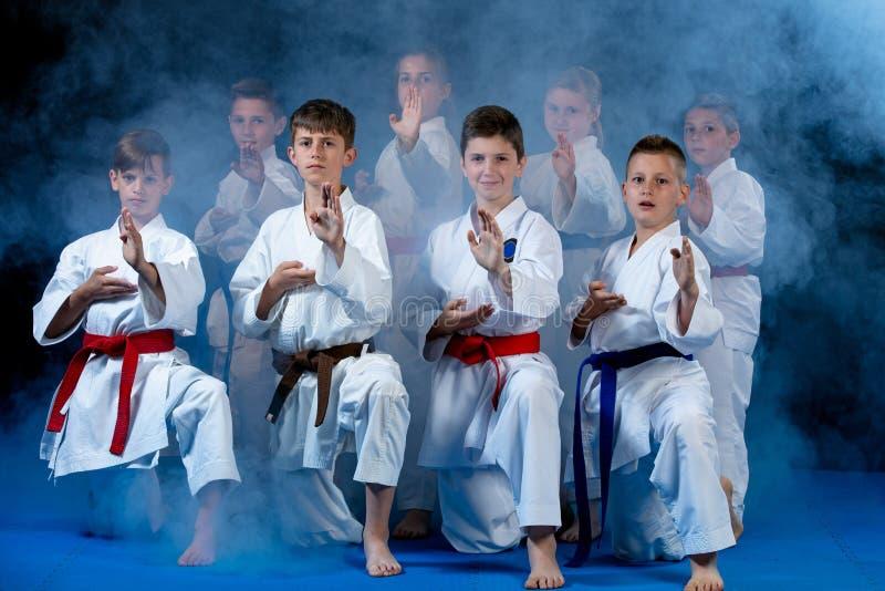 Barn härliga lyckade mång- etiska karateungar i karateposition royaltyfri foto