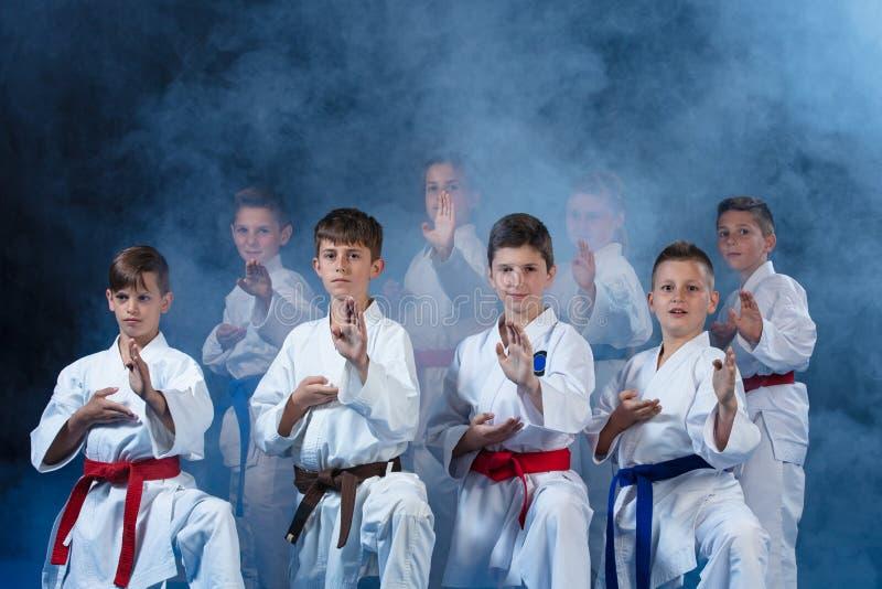 Barn härliga lyckade mång- etiska karateungar i karateposition arkivfoto