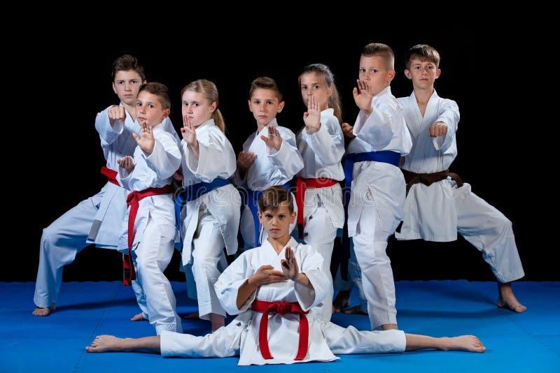 Barn härliga lyckade mång- etiska karateungar i karateposition arkivbild
