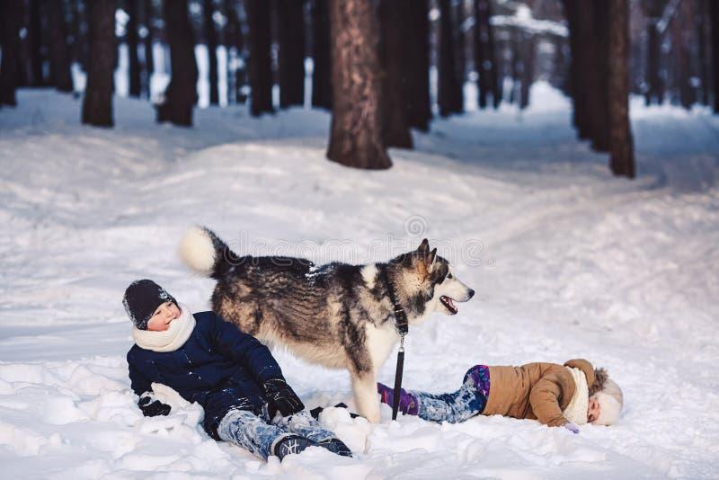 Barn har gyckel som spelar med deras hund i, parkerar i vinter arkivbilder