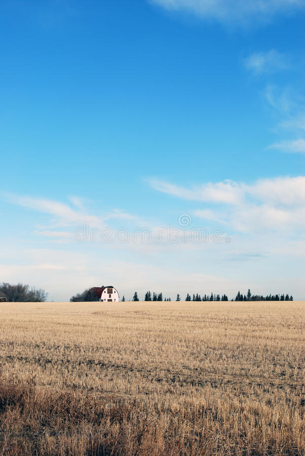 Barn in harvested field royalty free stock images