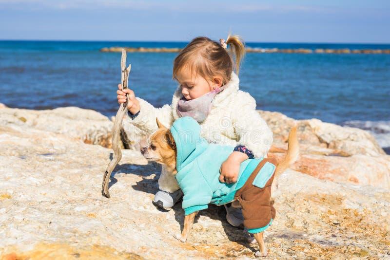 Barn-, husdjur-, sommar- och semesterbegrepp - liten flicka med chihuahuahunden på kusten royaltyfri bild