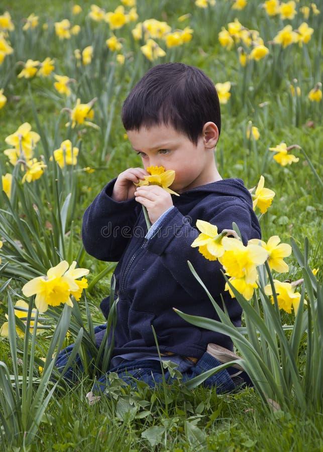 Barn i blommor royaltyfri bild