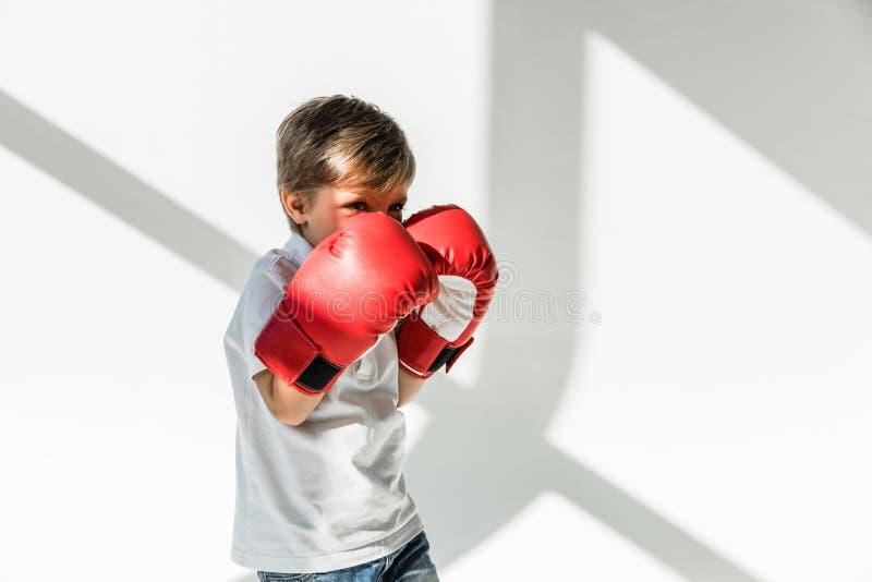 Barn i boxninghandskar arkivbilder