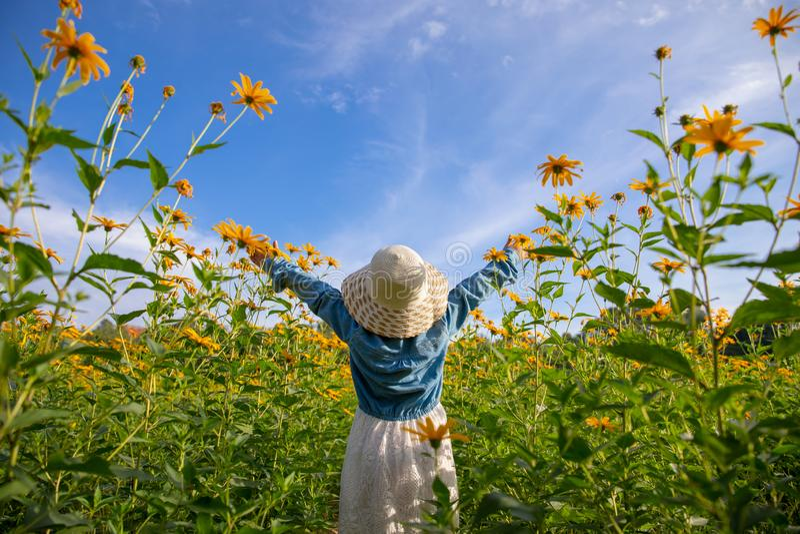 Barn i den gula blommagulingen för fält arkivbilder