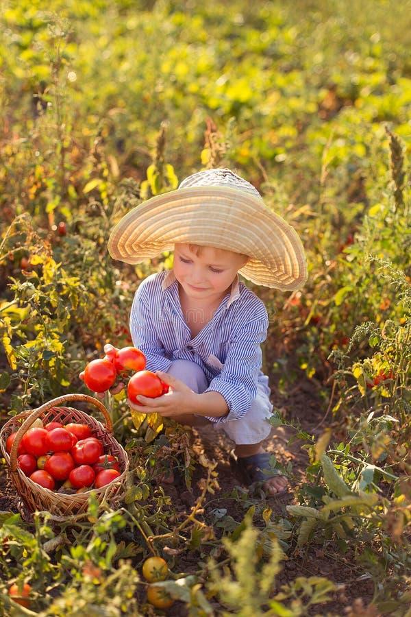 Barn i en trädgård fotografering för bildbyråer