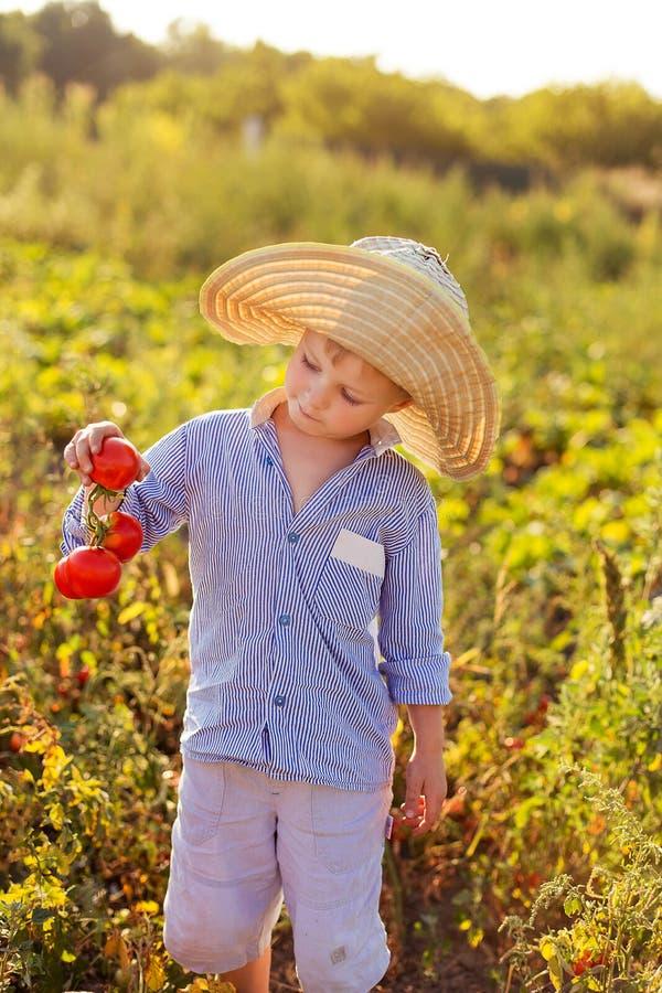 Barn i en trädgård arkivfoto