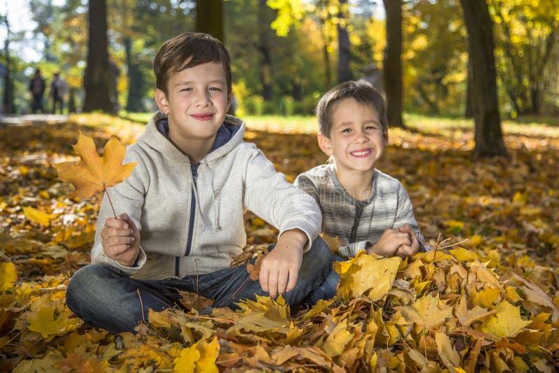 Barn i hösten parkerar fotografering för bildbyråer