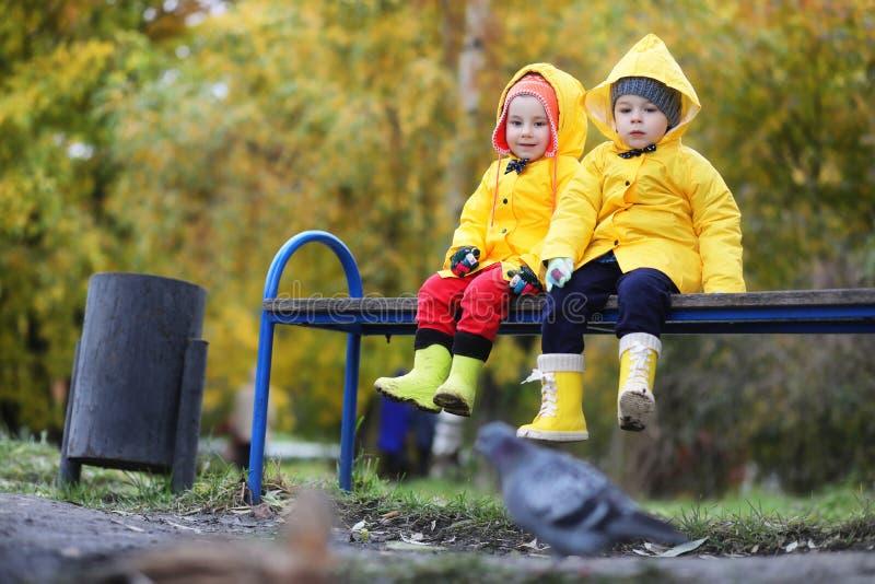 Barn i hösten parkerar går royaltyfria foton