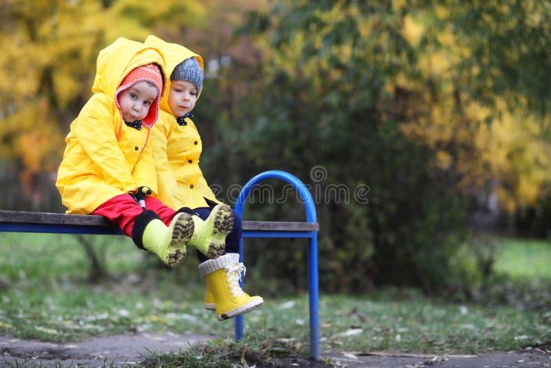 Barn i hösten parkerar går royaltyfria bilder
