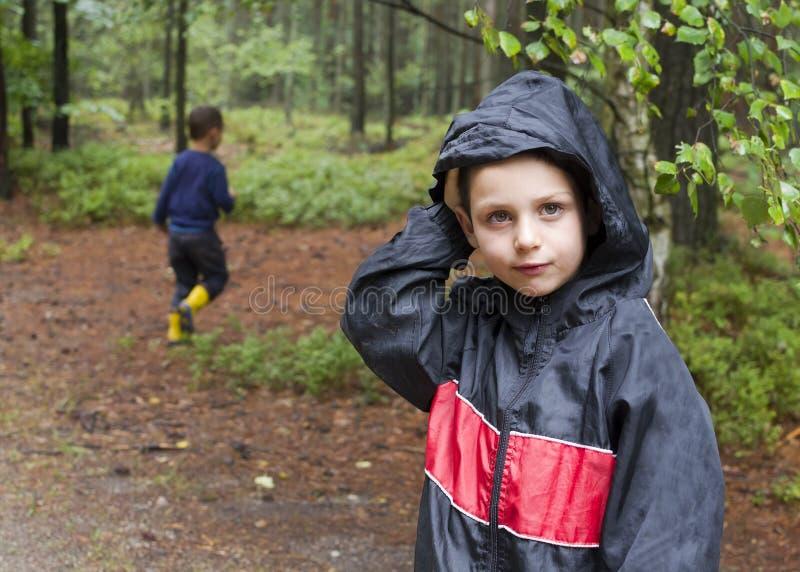 Barn i skog arkivbilder