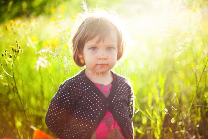 Barn i solljus arkivbilder