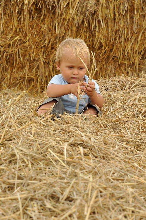 barn little sugrör royaltyfria bilder