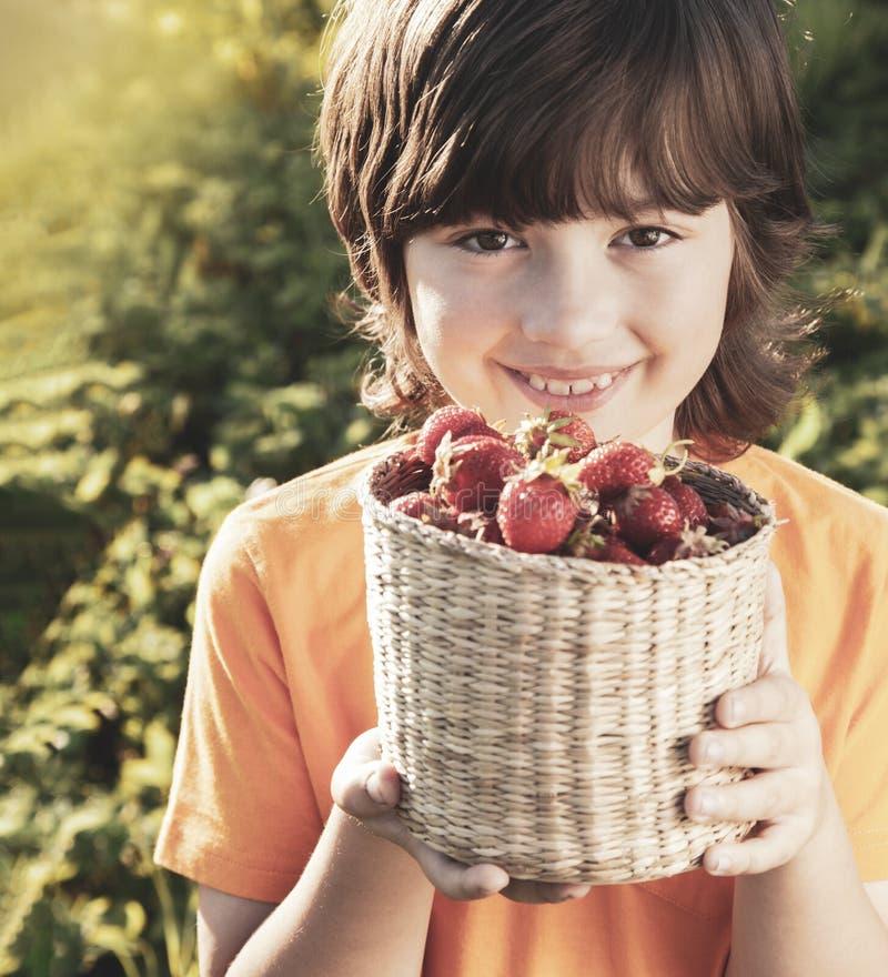 Barn med den soliga tr?dg?rden f?r jordgubbar med en sommardag royaltyfri bild