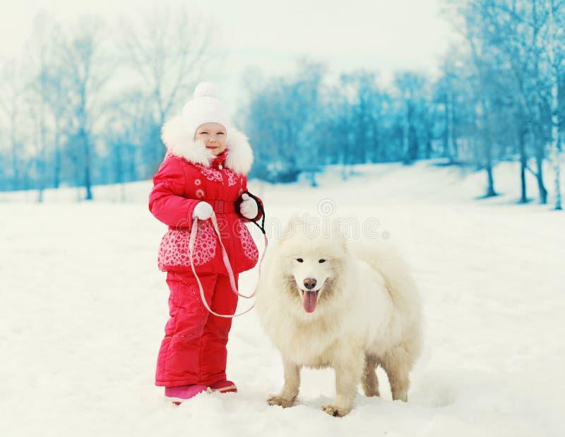 Barn med den vita Samoyedhunden på koppeln som går vinter royaltyfria foton